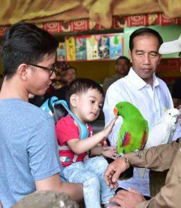 Ajak Cucu ke TMII, Jokowi Kenalkan Berbagai Spesies Burung 101