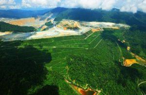 Tahun Ini, Pemerintah Akan Reklamasi Tambang Lebih Dari 7.000 Hektar 113