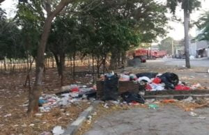 Hutan Kota Danau Cincin Tercemar Sampah, Kemana Petugas? 1
