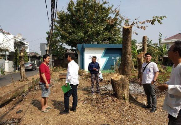 Petugas Perhutanan Tanjung Priok Cross Chek Penebangan Pohon di Sunter 1
