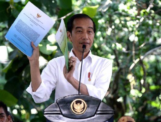 Presiden Jokowi Bagikan TORA Pertama di Kalimantan 1
