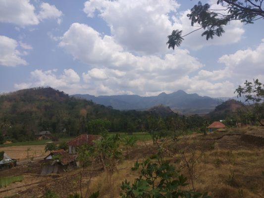 Perhutani Kawasan Gunung Tilu - Kuningan 101