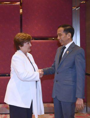 Bahas Kondisi Ekonomi Global, Presiden Jokowi Bertukar Pikiran dengan Direktur Pelaksana IMF 113