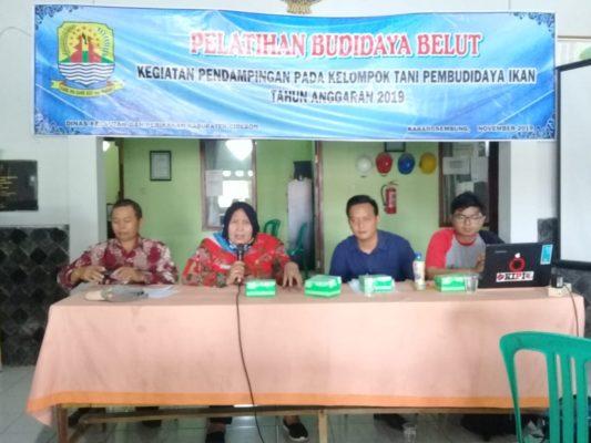 Dinas Kelautan dan Perikanan Cirebon Latih Warga Budidaya Belut 113