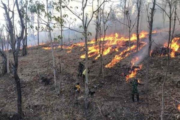 Satgas Pamtas Yonif 132 Padamkan Kebakaran Ladang di Wilayah Perbatasan 113