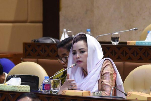 DPR RI Komisi V : Jelang Nataru, Keselamatan Masyarakat Harus Jadi Fokus Utama 113