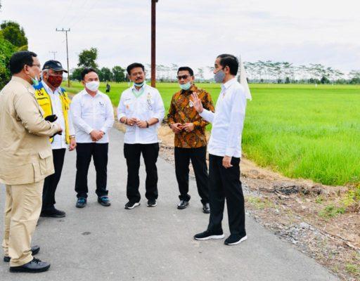 Presiden Jokowi Tinjau Jaringan Reklamasi Rawa di Pulang Pisau 113