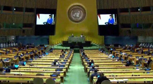 Presiden Jokowi Dorong PBB Perkuat Kerja Sama dalam Penanganan Covid-19 114