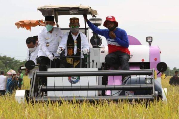 Mentan Syahrul Yasin Limpo Rayakan  Panen Padi Di Aceh Besar 114