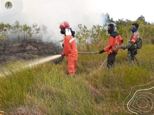 Hotspot Menurun Drastis, Menteri LHK: Kolaborasi Bersama Berhasil Cegah Karhutla 113