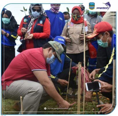 Bupati Pangandaran Hadiri Acara Tanam 20 Ribu Pohon Mangrove 111