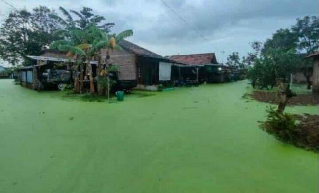 Pekalongan Terendam Banjir, Menteri PUPR Selesaikan Pembangunan Tanggul 7,2 Km 111