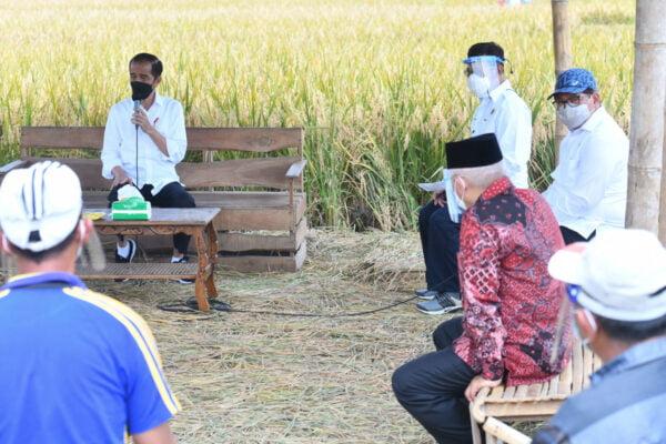 Presiden Tinjau Panen, Tanam, dan Penggilingan Padi di Kabupaten Malang 113
