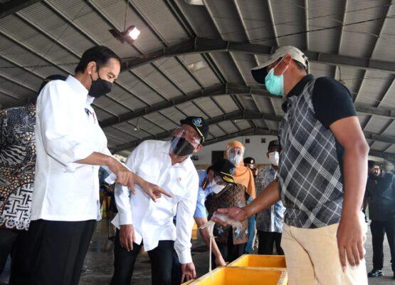 Pastikan Situasi Nelayan Selama Pandemi, Presiden Kunjungi PPDI Brondong Lamongan 113